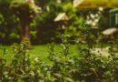 Záhrada je priestor pre aktívny odpočinok